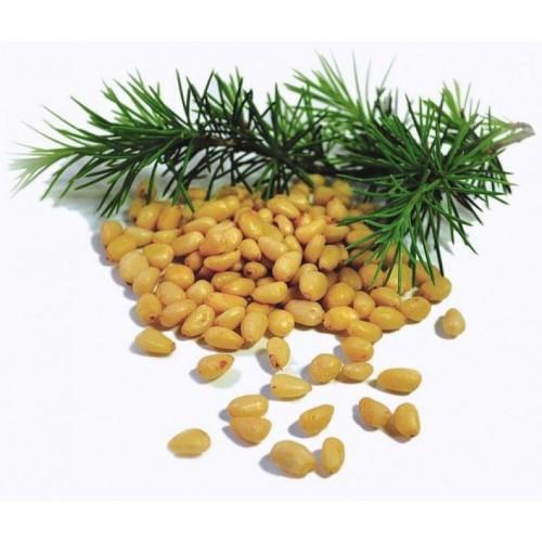 Zedernüsse, Wildsammlung aus Sibirien, 1 kg
